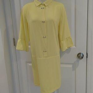 Zara ruffle sleeve dress